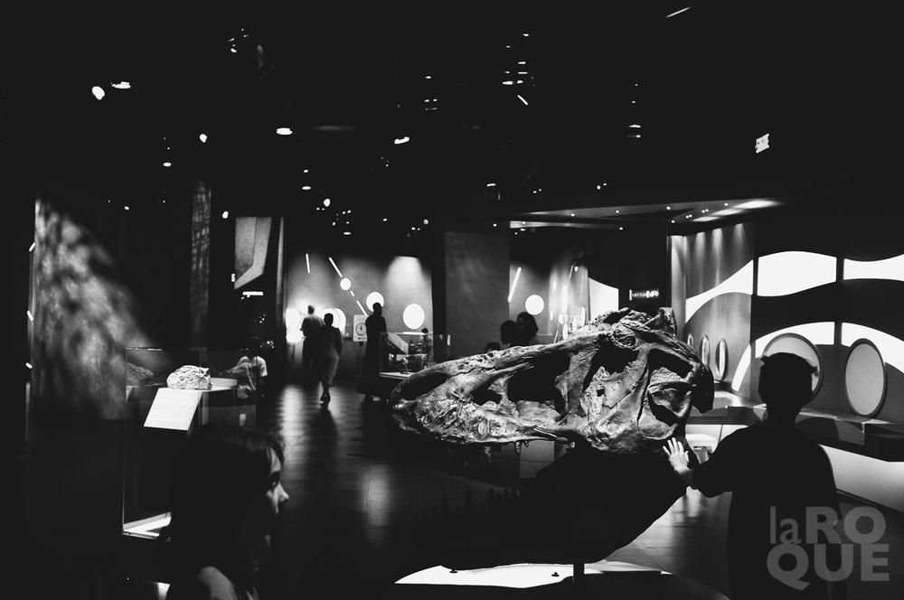 LAROQUE-planetarium-montreal-03.jpg