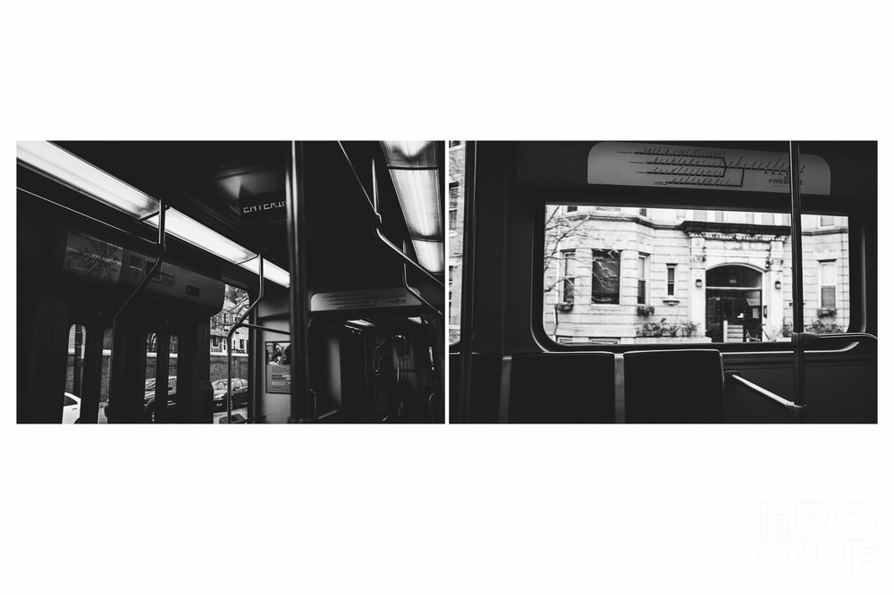 LAROQUE-diptych-boston-07.jpg