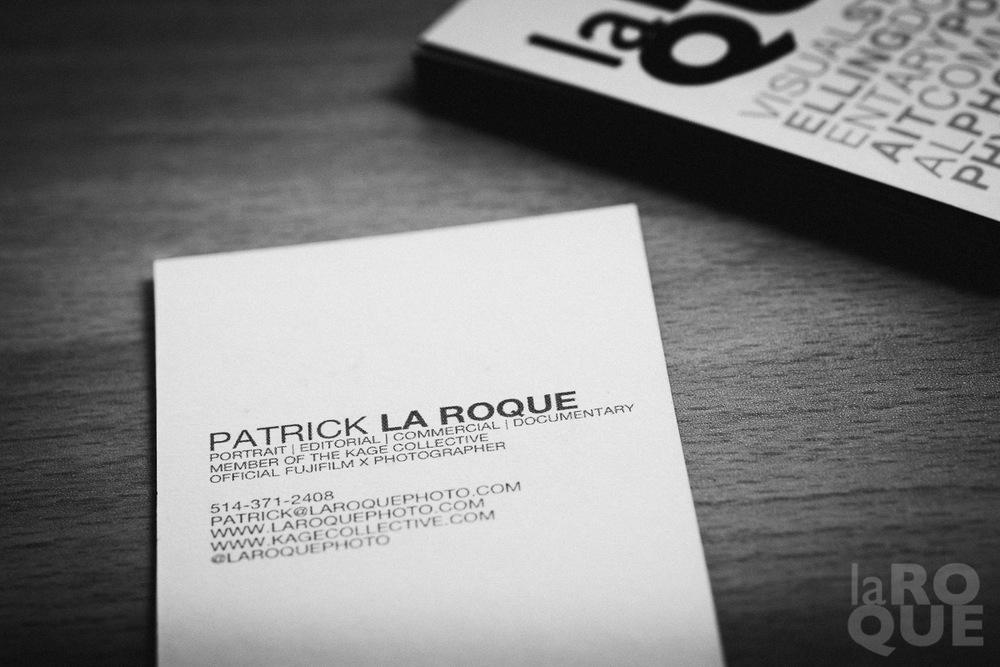 LAROQUE-moo-07.jpg