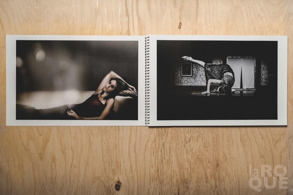 LAROQUE-printportfolio-04.jpg