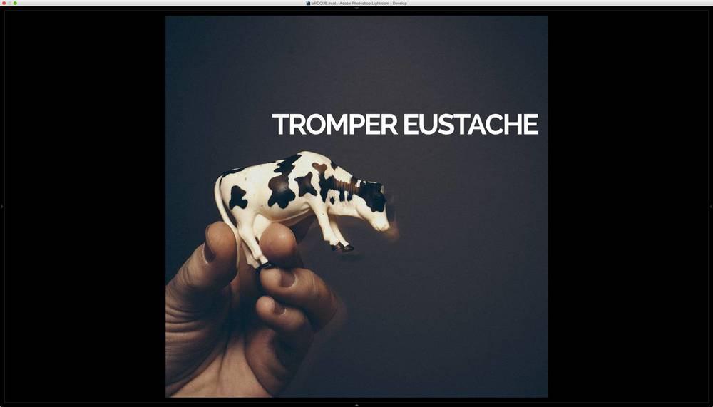 eustachecomp-4 copy.jpg