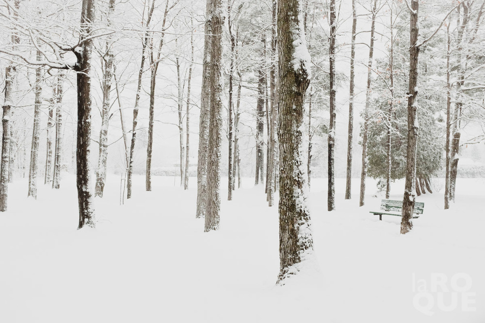 LAROQUE-snowblindness-02.jpg