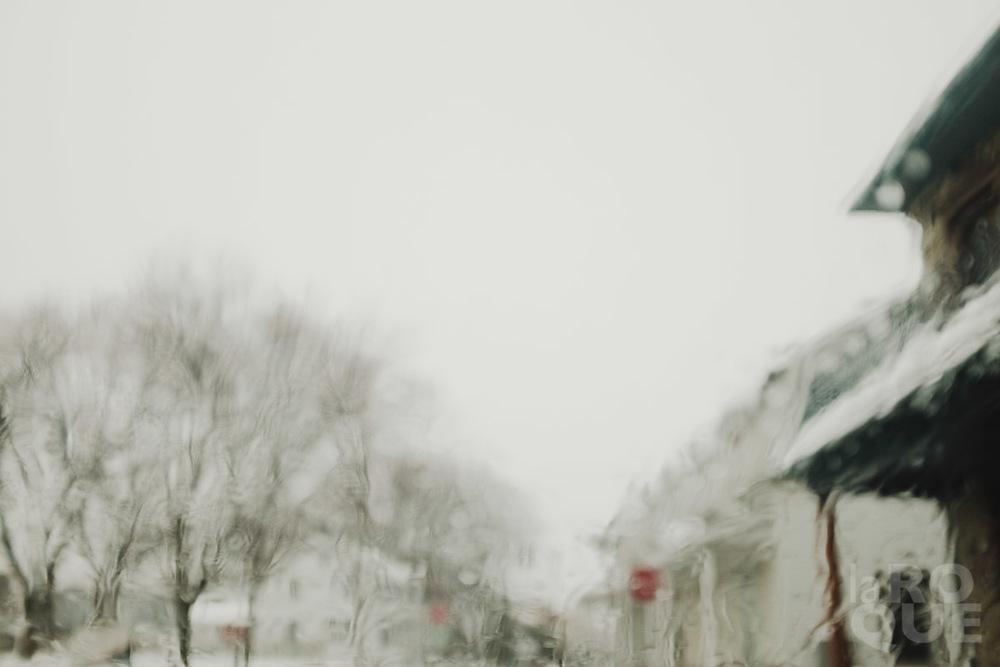 LAROQUE-snowblindness-05.jpg