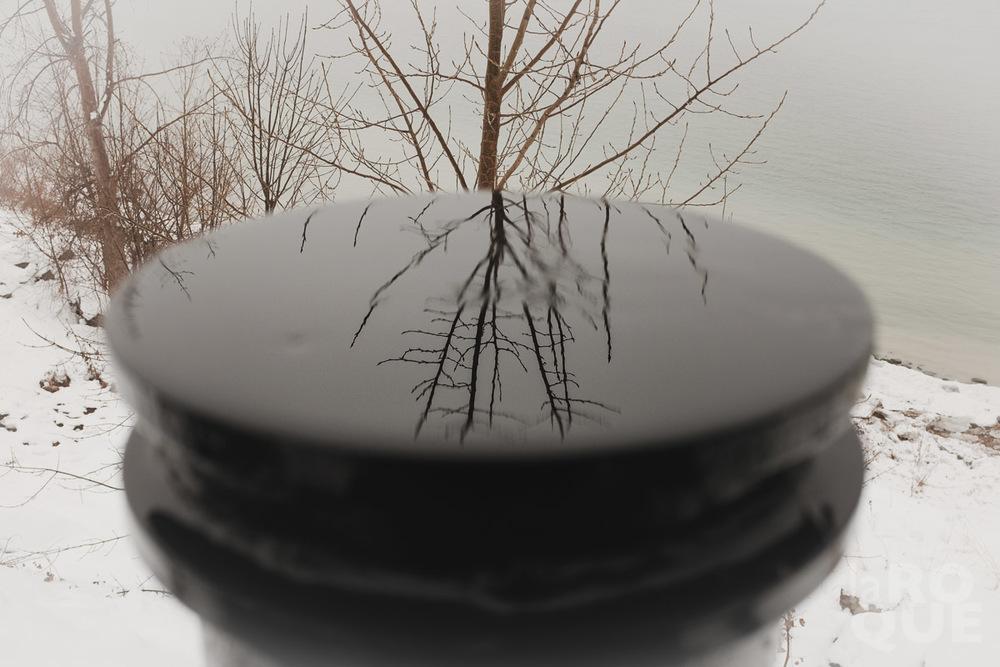 LAROQUE-snowblindness-07.jpg