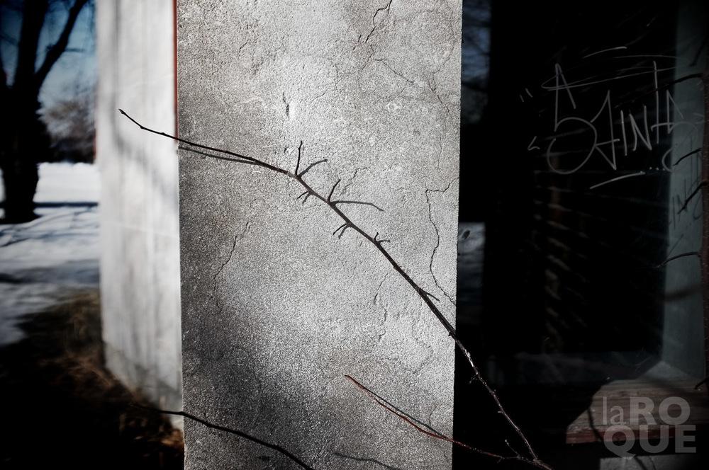 LAROQUE-vestiges-05.jpg