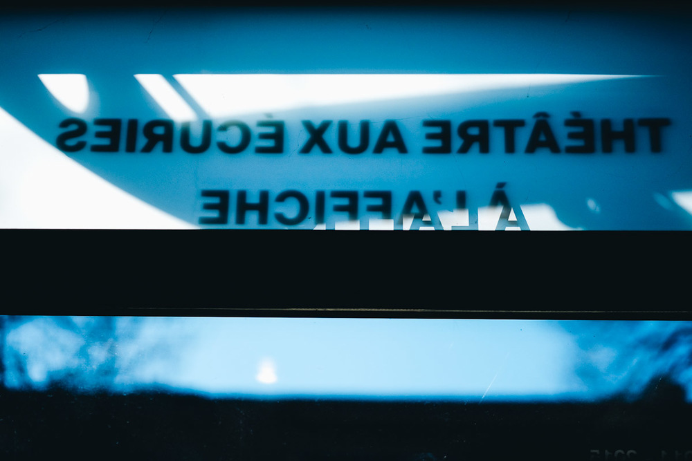LAROQUE-ecuries-environnement-14.jpg
