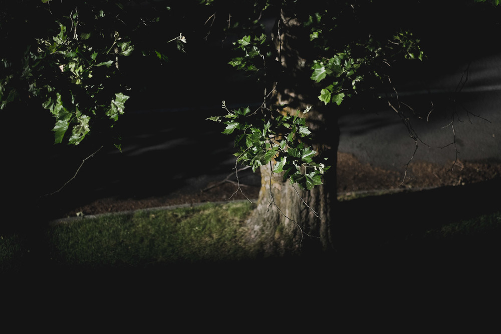 LAROQUE-settlemets-02.jpg