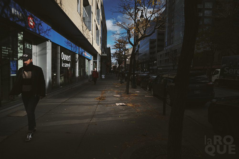 laROQUE-wider-cityscape-005.jpg