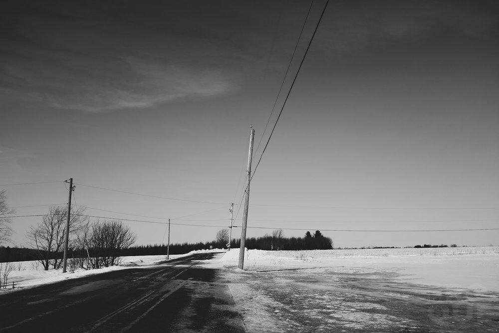 laROQUE-spring-forward-005.jpg