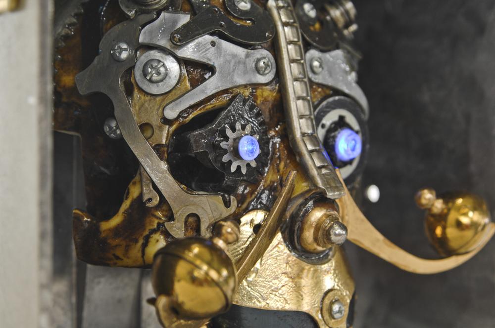 Swashbuckler Skull