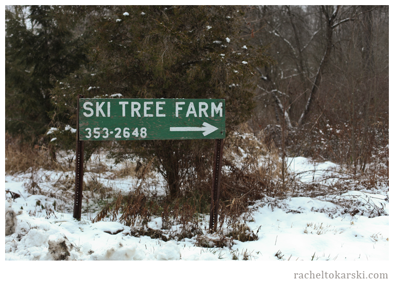 Ski Tree Farm-1.png