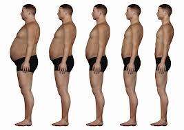 Fat-to-Thin.jpg