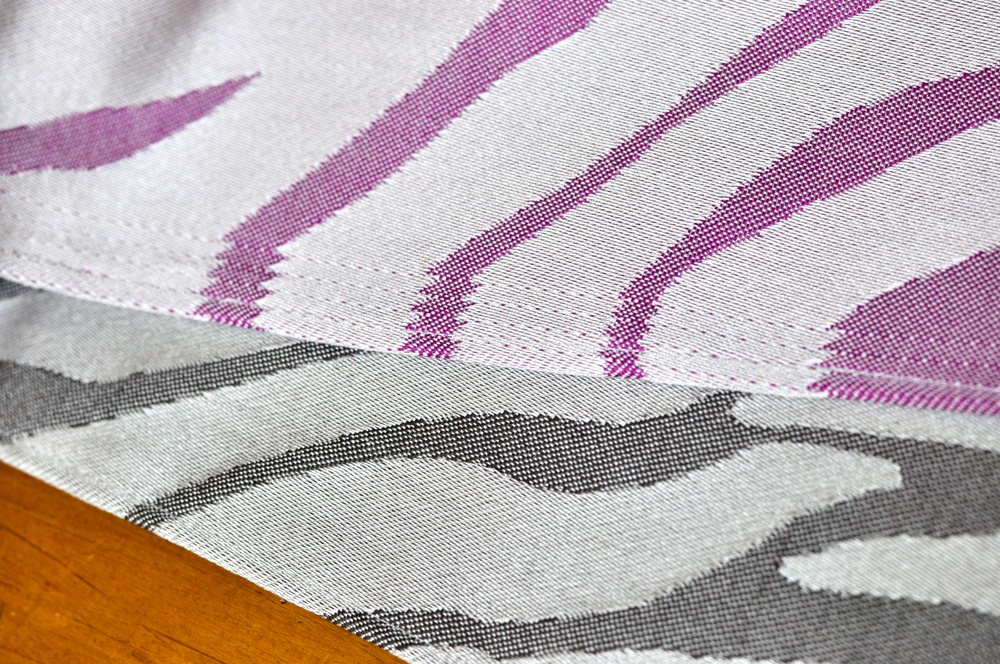Zebra - 24.jpg
