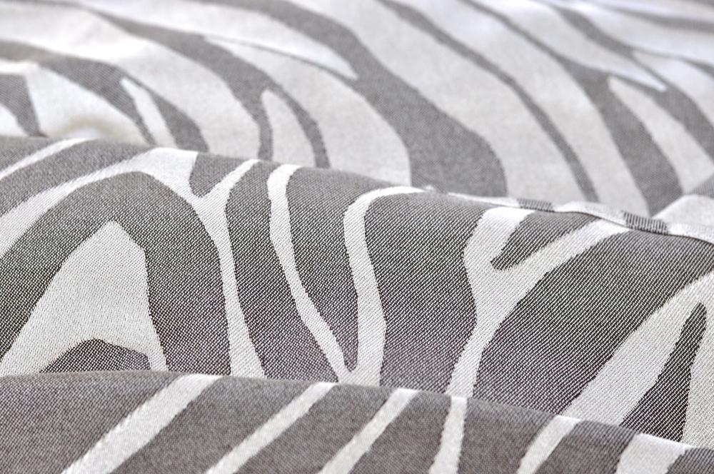 Zebra - 02.jpg