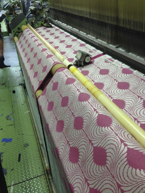 Pavo sampling on the loom