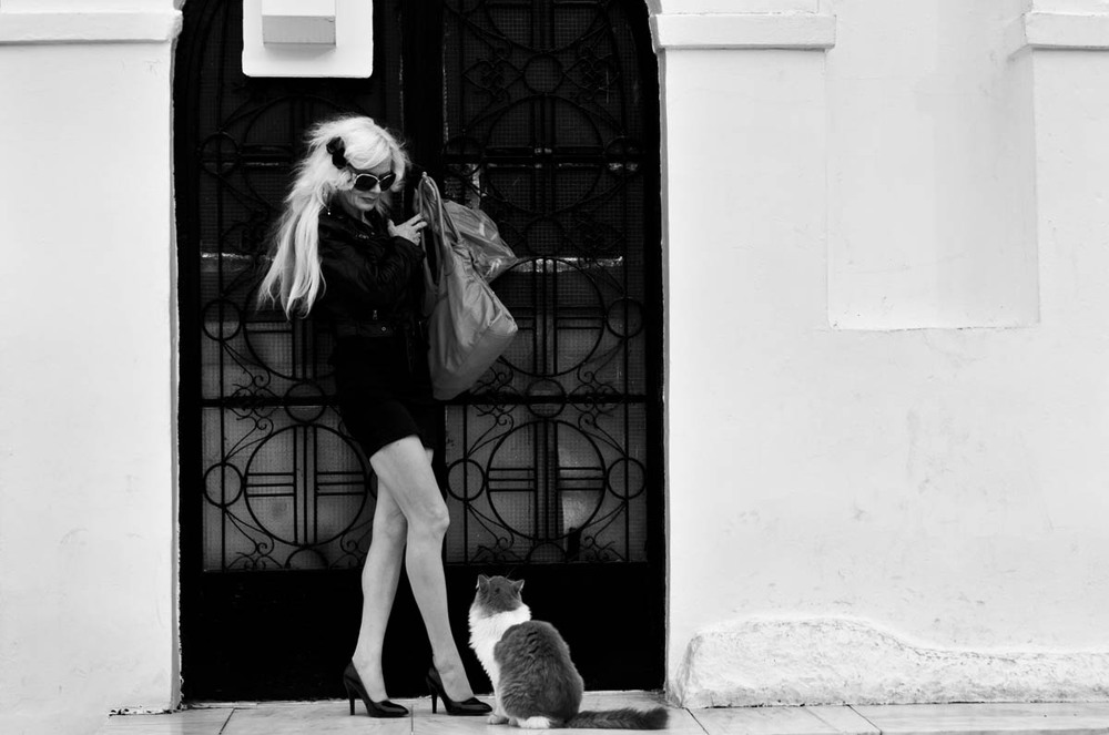 A woman poses with a cat while being filmed on top of Likavitos Hill, which overlooks the entire city of Athens on November 17, 2012.