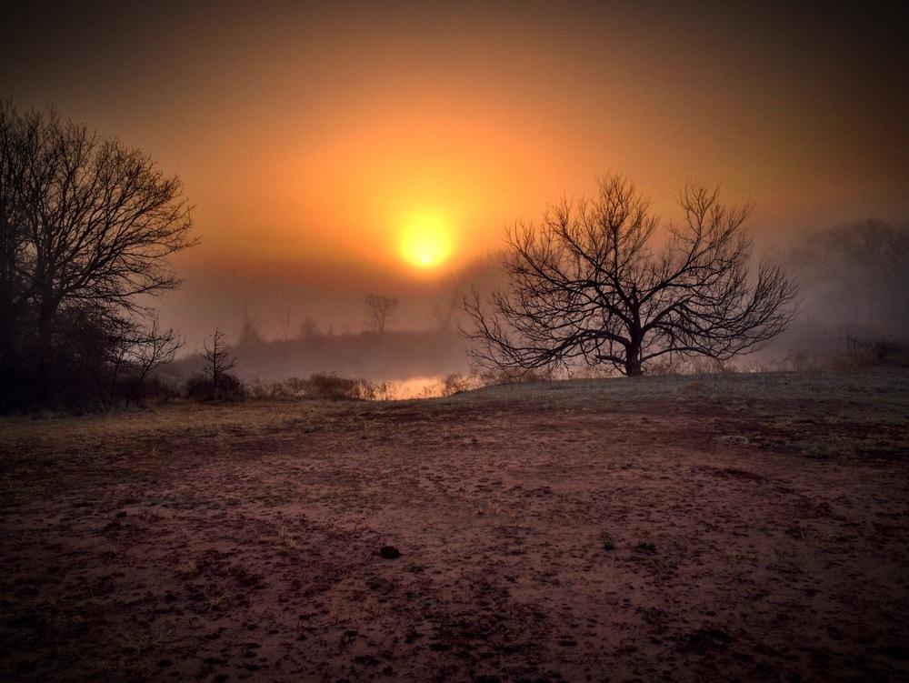 FogSunrise.JPG