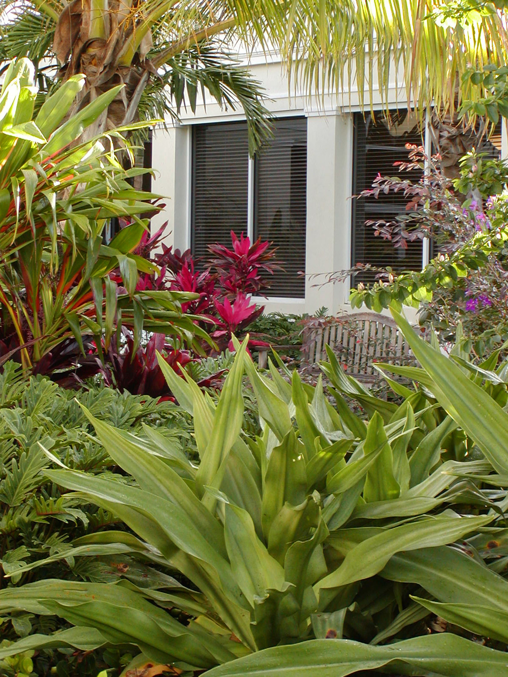 Gentile Holloway O'Mahoney Landscape Architects Planners Environmental Consultants Tropical Design.jpg