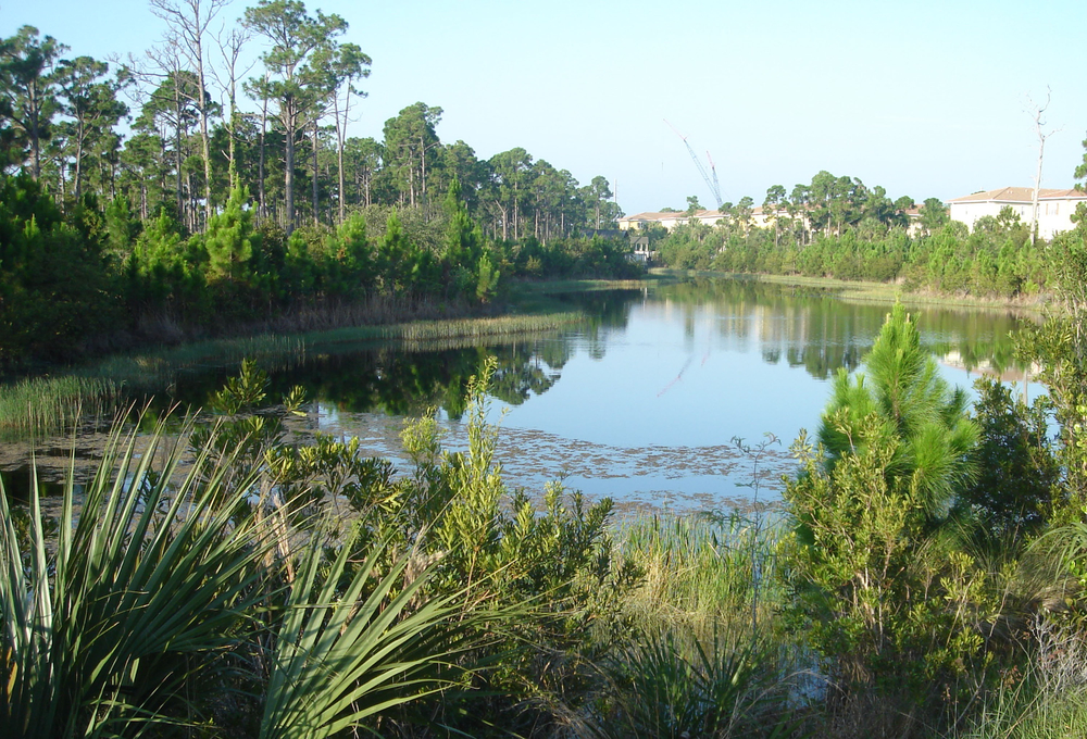 Abacoa Greenway Wetland with Mixed Use.jpg