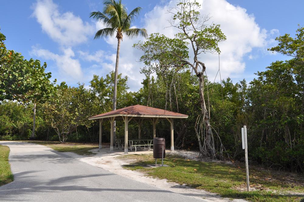 Burt Reynolds Park Palm Beach County Florida Picnic Shelter and Mangrove.JPG