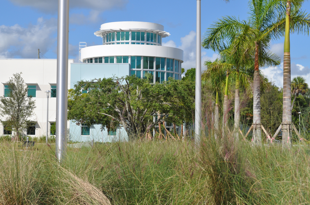 Harbor Branch Oceanographic Institute at FAU Research Laboratory II Native Florida Grasses Green Building LEED Silver.JPG