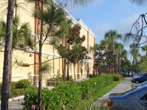 Publix Chasewood Plaza Jupiter Florida Side Landscaping.jpg