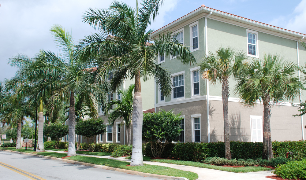 The Gables Floresta Jupiter Florida Royal Palms Lining Street.jpg