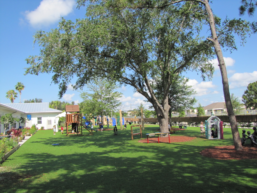 Turtle River Montessori Playground with Existing Live Oak for Shade.jpg