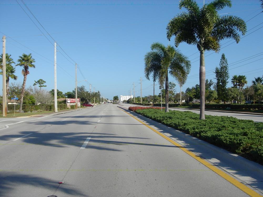 Kanner Highway Stuart Florida FDOT Foxtail Palms.JPG