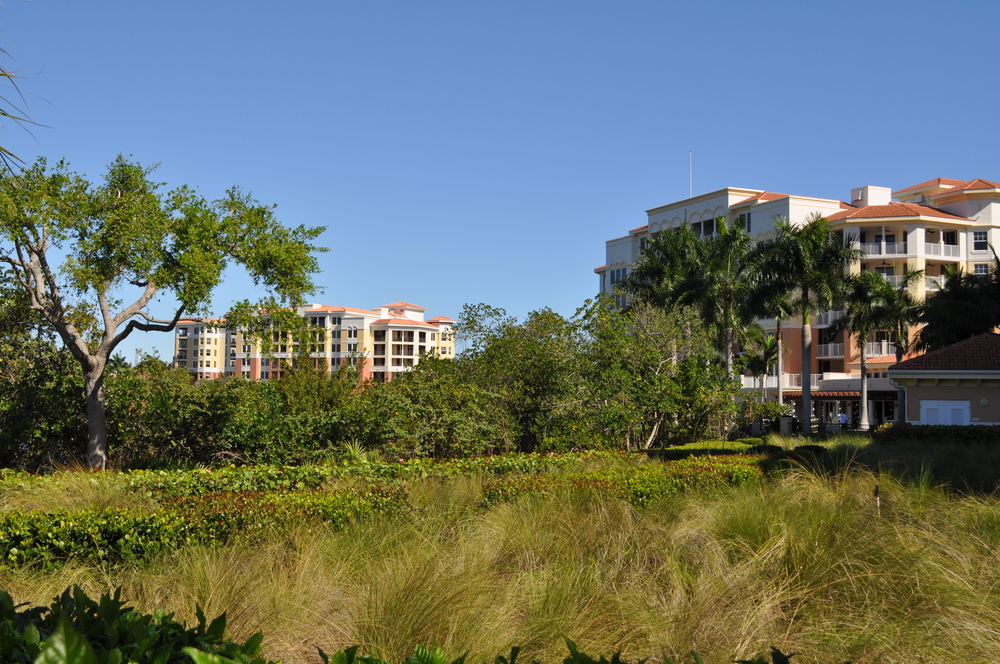 Jupiter Yacht Club Florida Bio Swale Retention.JPG