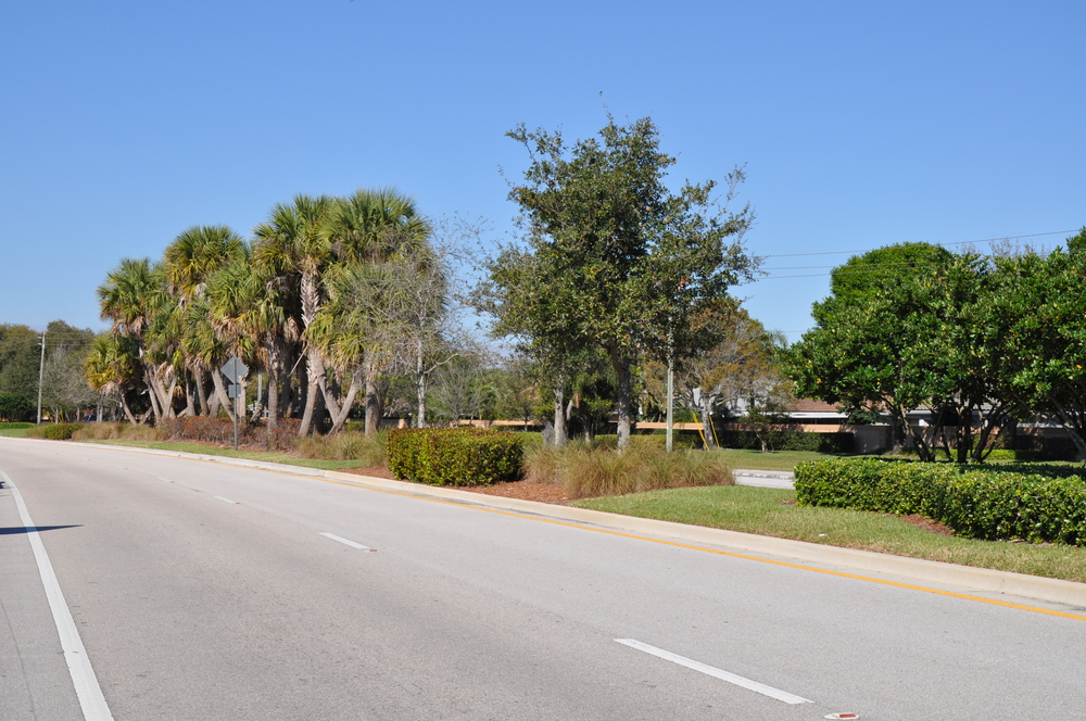 Indian Creek Parkway Jupiter Florida Typical Landscaping.JPG
