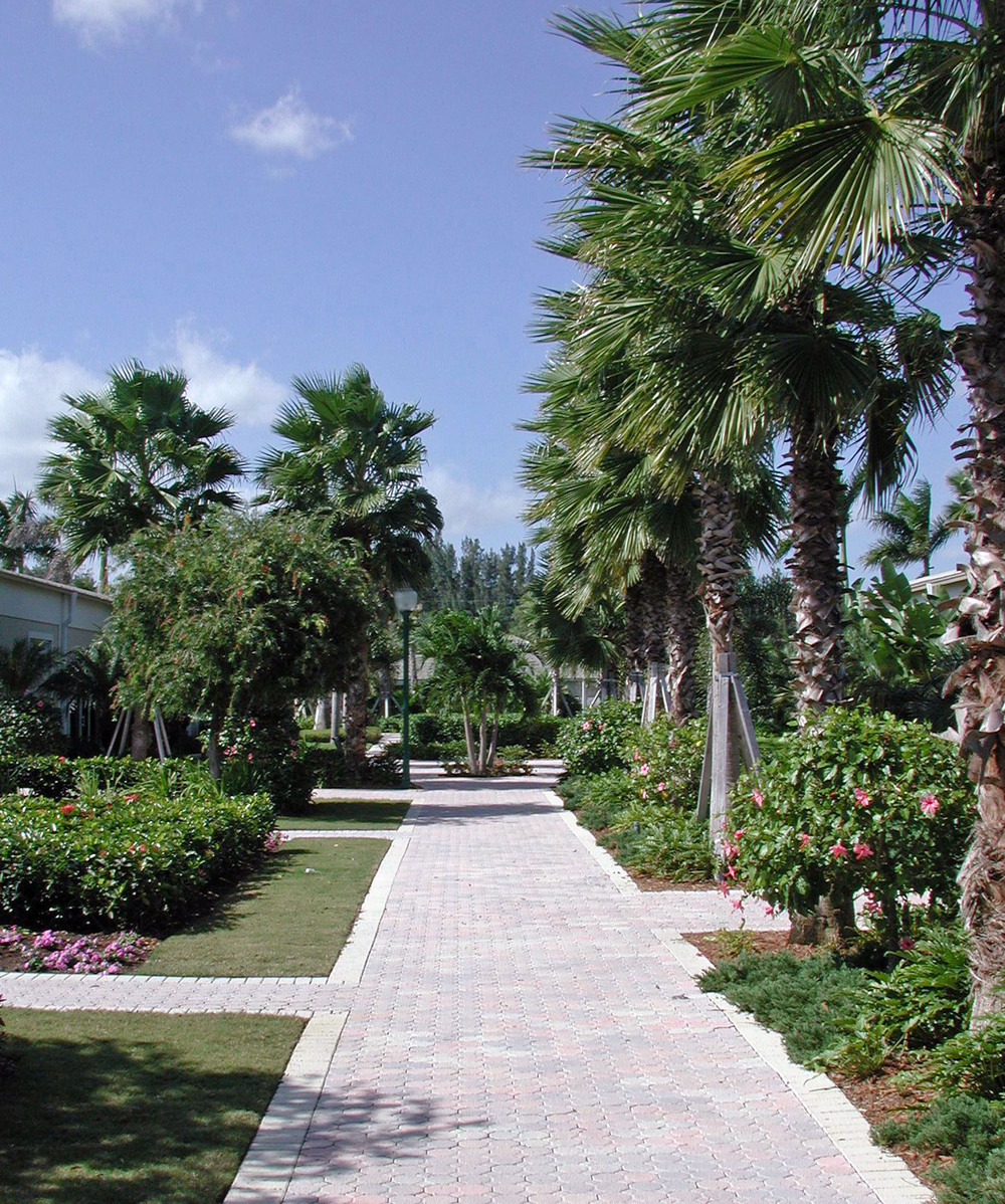 Tropical Formal Landscape at Christ Fellowship Church Landscaping PBG.JPG