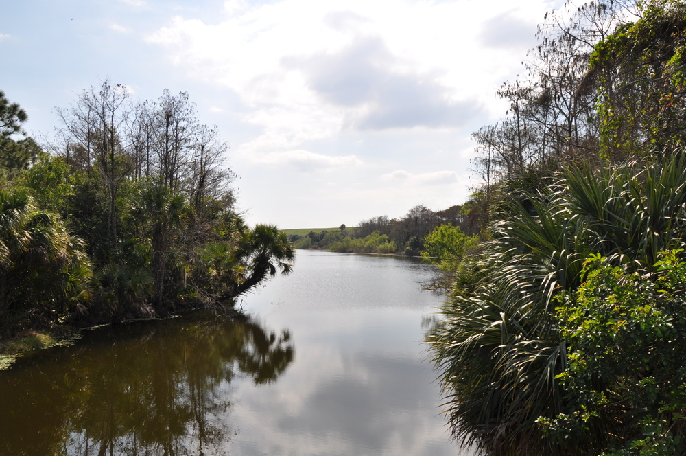 Dyer Landfill Reclamation Palm Beach County Florida Restored Waterway.JPG