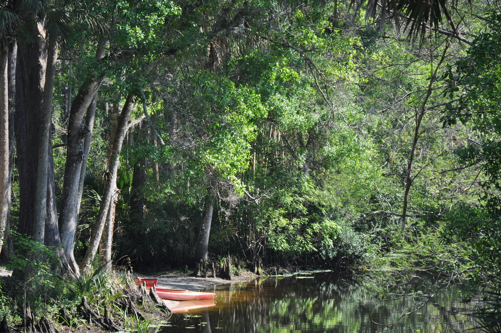 Riverbend Park Palm Beach County Kayak Canoe Launch.JPG