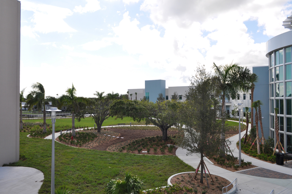 Harbor Branch Oceanographic Institute at FAU Research Laboratory II Courtyard Oak View.JPG