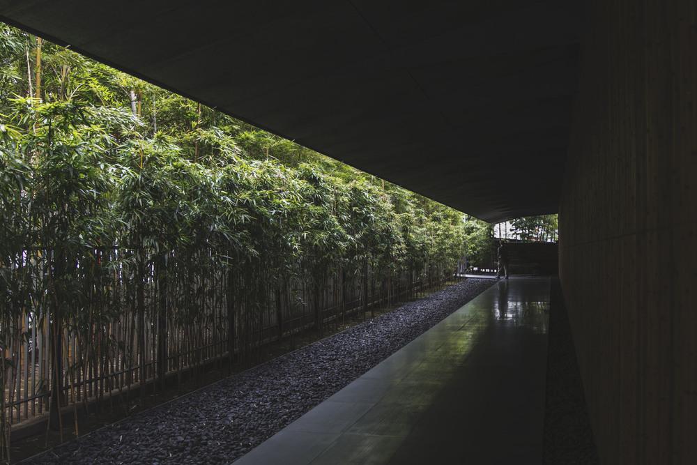 Nezu Museum - Kengo Kuma + Associates