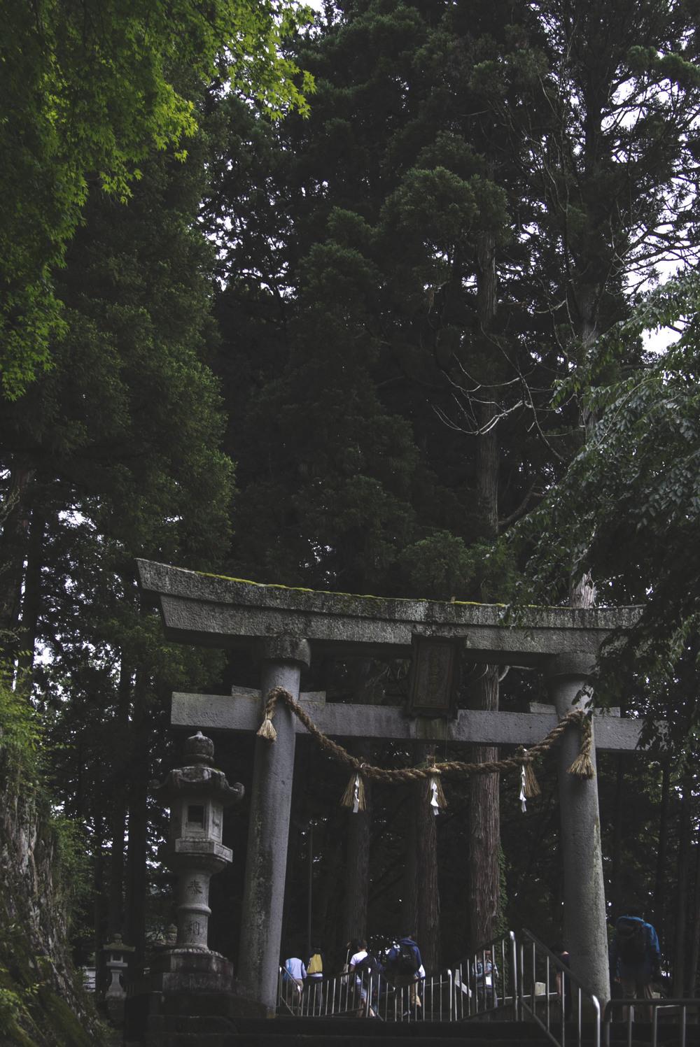 Ascending to the shrine.