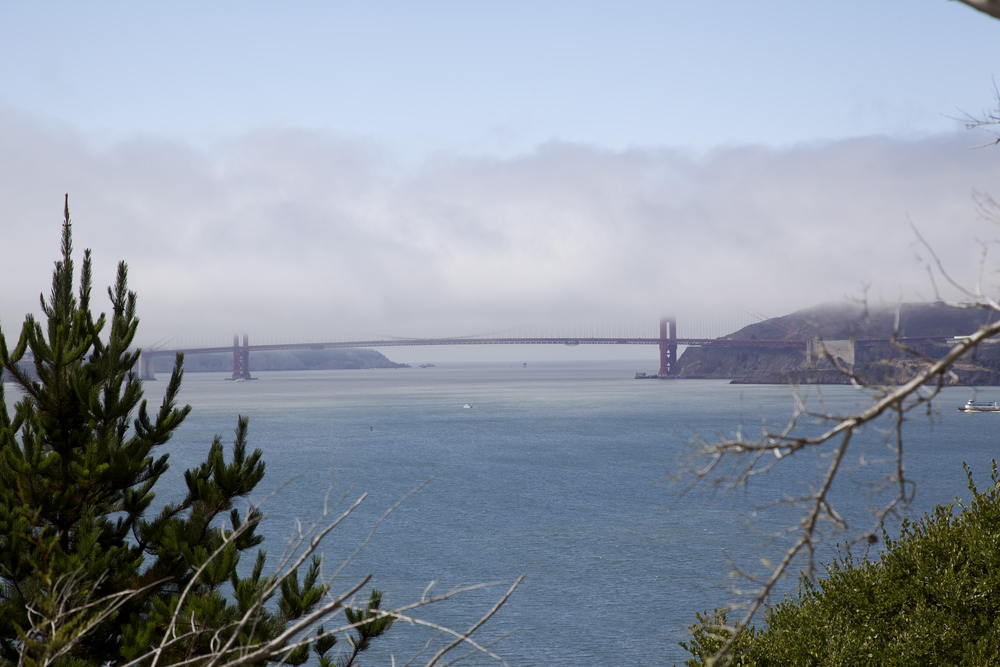 View of the Golden Gate Bridge from Angel Island