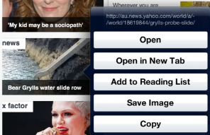 Save image from a web site to the Camera Roll