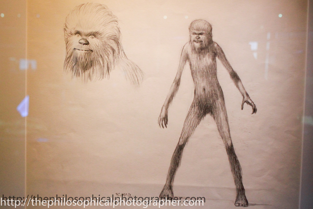 Chewbacca as a Young Wookie