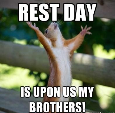 rest-day-squirrel.jpg