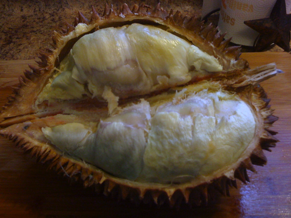 David's second entry in his food blog is out, and it's about…. DUN DUN DUNNNNNNNNNNNN   Durian.   Just looking at that picture makes me want to brush my teeth and gargle grain alcohol.   Thankfully David's writing is witty and pithy as usual, so it's a little easier to choke down the photos. He made five different dishes with the stink fruit. Check it out:  The Perfect Risk Taking Meal – Durian « Immaculate Ingestion