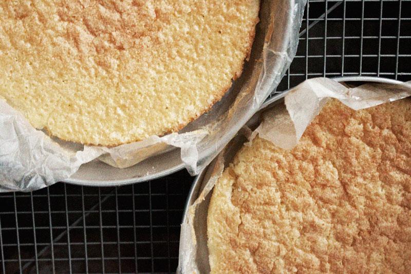 128js-Boston-Cream-Cake-11.jpg
