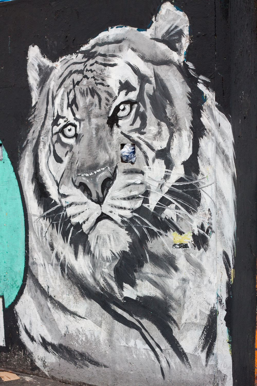 Rio de Janeiro, Rocinha, favela, landscape, travel photography, Brazil, Brasil, tiger, street art, graffiti