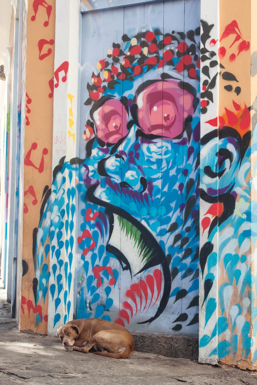 Brazil, Rio de Janeiro, Landscape, Travel photography, architecture, Lapa, street photography, graffiti