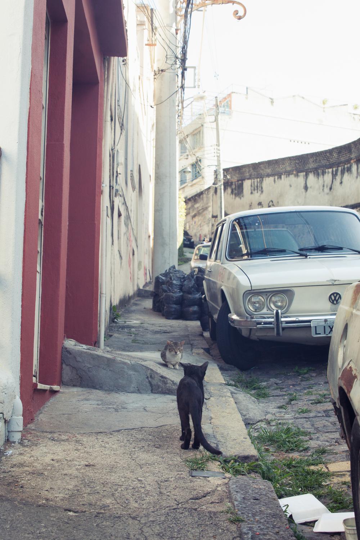 Brazil, Rio de Janeiro, Landscape, Travel photography, architecture, Lapa, street photography