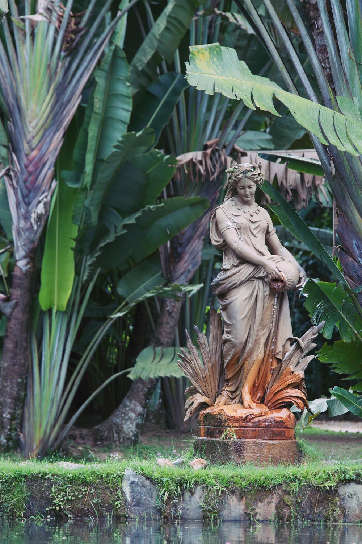 Brazil, Rio de Janeiro, Landscape, Travel photography, architecture, street photography, botanical gardens, jardins