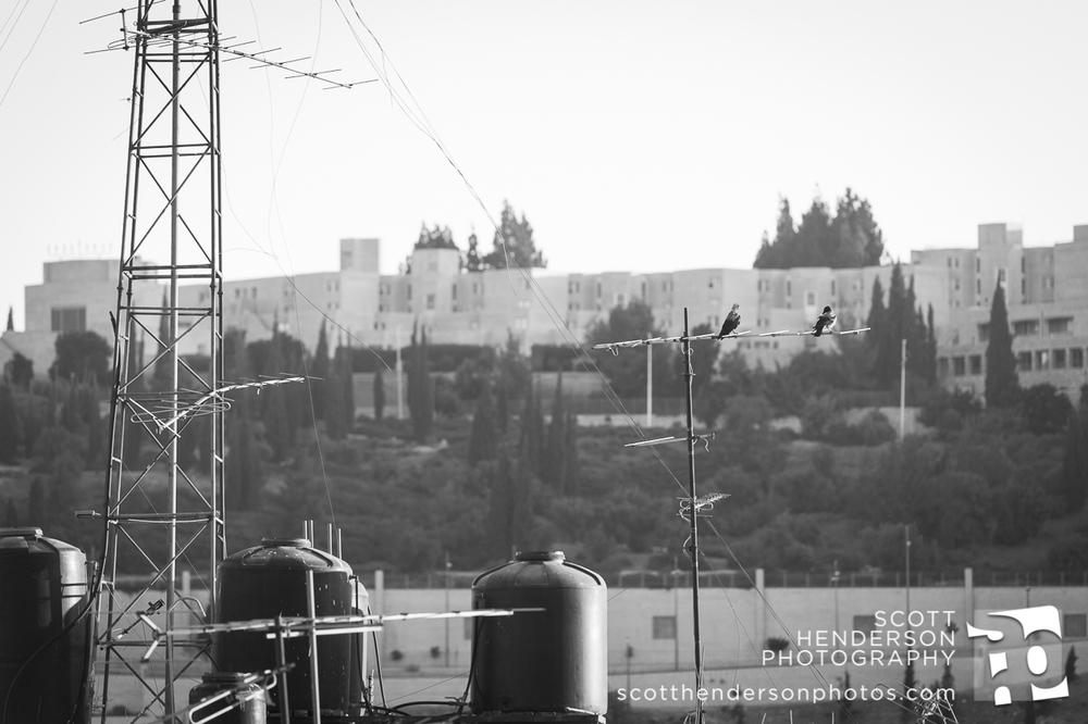 israel2013blog-003.jpg