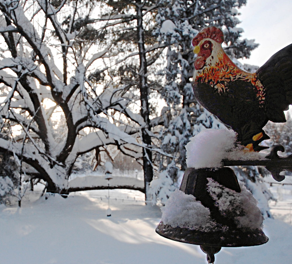Snow on a cast Rooster bell mount.