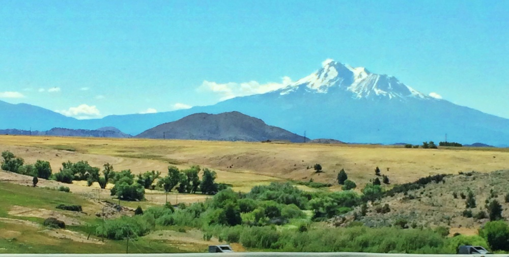 Mt. Shasta is the tallest peak in the lower 48 states; but, surprisingly I still think Mt. Ranier looks more magnificent.